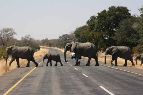 Kasane And Chobe, Botswana