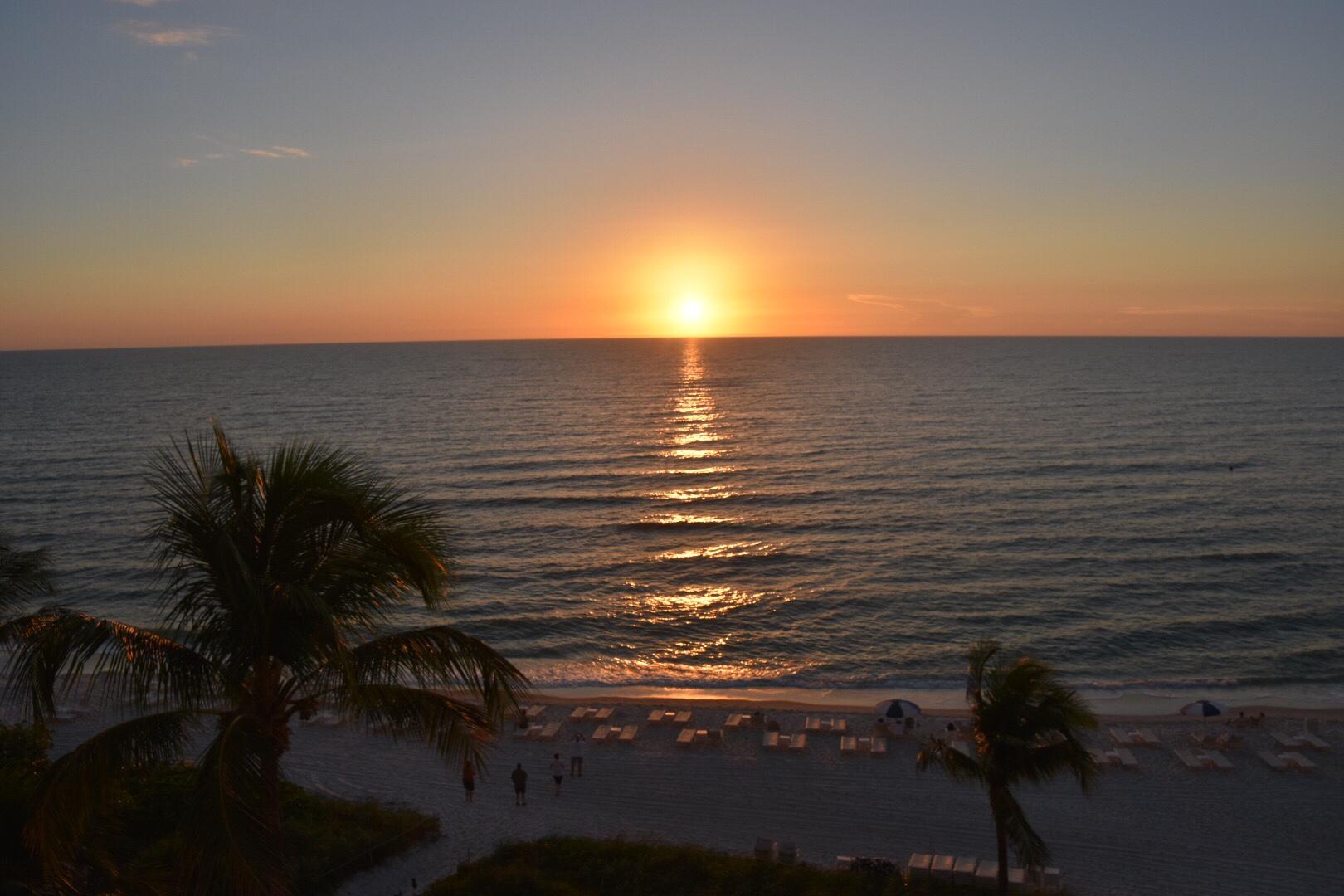A Week In Florida